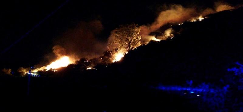 Környezeti tragédia a Kanári-szigeteki tűzvész
