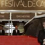 Imádta Pálfi filmjét a közönség Cannes-ban