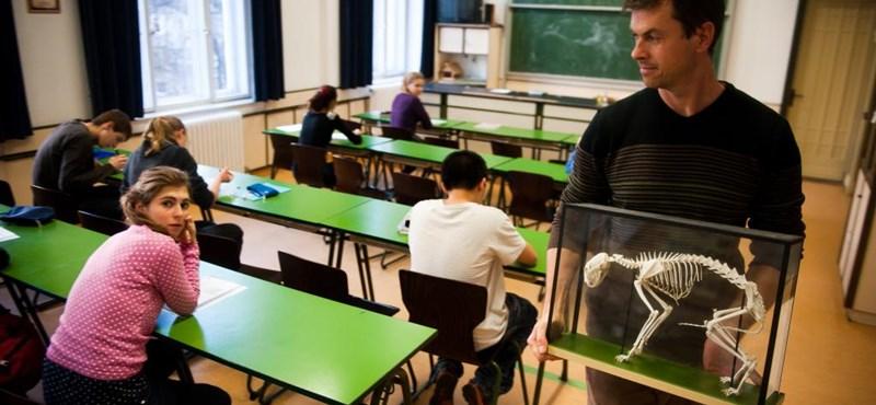 Ösztöndíj tanárszakosoknak: így kaphattok 25-75 ezer forintot havonta