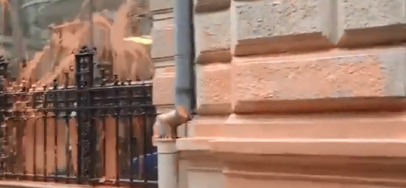 Narancssárgára festették Gulyás Mártonék az ÁSZ épületét