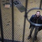 Hiába a törött ujj, mégis Gulyás Mártont ítélték közérdekű munkára