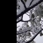 Ilyen is ritkán van: havazott Hawaiin