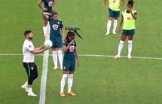 Leállt a brazil női válogatott edzése, miután egy papagáj szállt az egyik játékos fejére