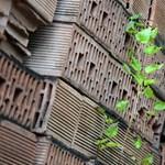 Meghallották az idők szavát: újranyit az építőanyaggyár Debrecenben