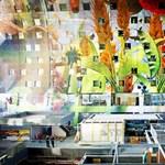 Csodás piacot építettek Rotterdamban – fotók