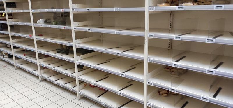 Jutalmat ad kitartó dolgozóinak az Auchan