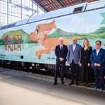 Fideszes vállalkozók jártak jól a kisiskolásoknak adott utazási kedvezménnyel