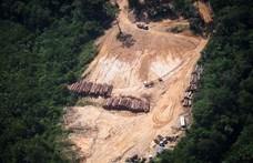 Épp az illegális fakitermelésről forgatott a Netflix stábja, amikor fatolvajok támadtak rájuk