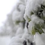 Több centi hó hullhat ma