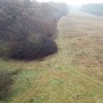 Így keresi az eltűnteket a kutató-mentők drónja – videó