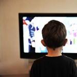 Hogyan valósul meg a távoktatás? - Otthoni tanulás a Tv-ből