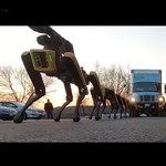 Videó: Lenyűgöző és félelmetes, hogyan dolgozik össze a Boston Dynamics 10 robotkutyája