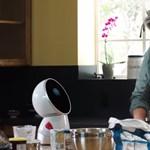 A netezők kérték (és pénzt is adtak rá): érkeznek a családi robotok