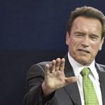 Schwarzenegger leugrott a Balatonra borozni