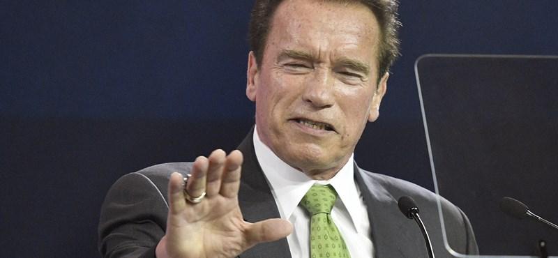 Schwarzenegger egy 13. kerületi konditerembe ment edzeni – fotó, videó