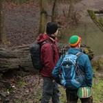 Hazai pálya: Mit keresett Sobri Jóska ott, túl a kidőlt fán? (videó)