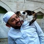 Egyre többen kíváncsiak a macskaparadicsommá vált török mecsetre – videó