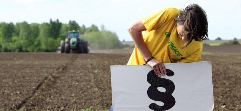 Válasz.hu: Kishantos miatt rúgták ki a földalap ügyvédeit