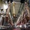 A kínaiak miatt nőhet a disznóhús ára nálunk is