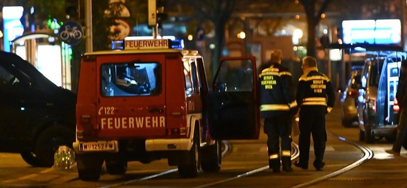Bécsi terrortámadás: Két török MMA-harcos bátor helytállásáról ír a sajtó
