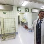 Semmelweis-rektor: hadgyakorlat volt a kórházi ágyak felszabadítása