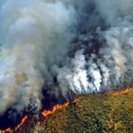 Hamis fotók terjednek a neten a brazíliai erdőtüzekről