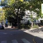 Fotó: Bújócskázik a KRESZ-tábla, de kattan a kerékbilincs Terézvárosban