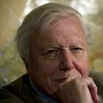 Attenborough: vége az emberi evolúciónak