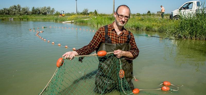 A Nemzet Napszámosa meg ezer kiló ponty - Tóta W. halásznak állt