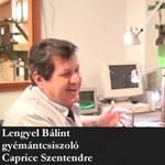 Gyémántbirodalom Szentendrén – videó