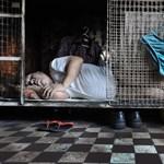 Ketreclakások a világ egyik legmenőbb városában – galéria