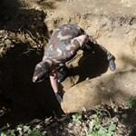 Robbanótestet találtak Körmenden