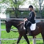 Új magyar lóversenypálya születik