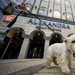 Befektetőt keresnek az Alexandra megmentéséhez