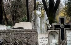 Visszafordítható-e a halál? Újraírhatja a halál fogalmát egy új tudományos felfedezés