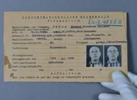 13 millió dokumentumot tettek közzé a nácik által meghurcoltakról a neten