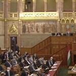 Balhé, oltásellenesezés, kiabálás, kivonulás – ilyen volt a parlament kedden