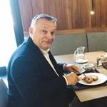 Gomperz: Menzaszocializmus