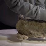 50 ezer éves oroszlánkölyök került elő az örök fagyból – fotók