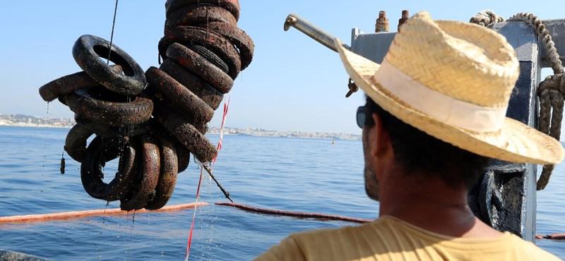 Mesterséges zátonyt csináltak volna autógumikból, de megmérgezték a tengert