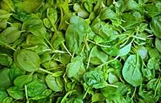 Szokott zöld színű zöldséget enni? Lehet, hogy kellene