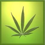 Vándorkiállítás a kábítószerekről