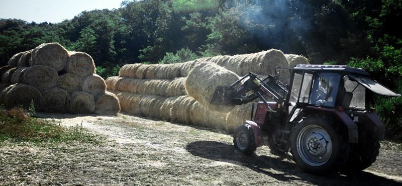 Az alföldi gazdákat szerette legjobban Matolcsy hitelprogramja