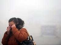 A rossz levegő csökkentheti a nők termékenységét