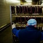 Újra füstölik a kolbászt Gyulán - Nagyítás-fotógaléria