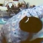Videó: a Skype buktatta le a kegyetlen ápolót