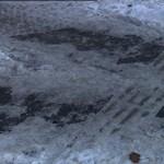 Kisétált a főútra egy látássérült, mert a letakarítatlan hó miatt nem tudott tájékozódni