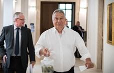 Orbán Viktor megsétáltatta a kovászos uborkáját