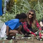 Melania Trump ledobta a tűsarkút és elment kapálni a kertbe – fotók, videó