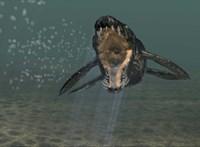 Tudományos szenzáció: plioszaurusz fogát találtak a szomszédban
